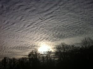 Moving Sky   (foto by Ute Passionflower Apfelstedt)